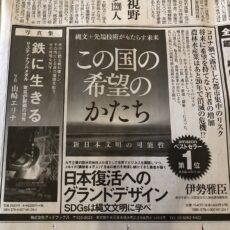 産経新聞、半五段広告